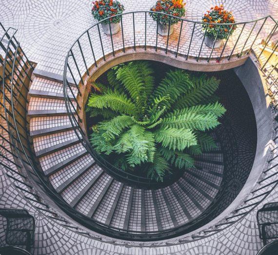 Les différentes formes d'escaliers