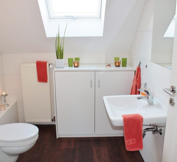 Choix et installation d'un nouveau WC